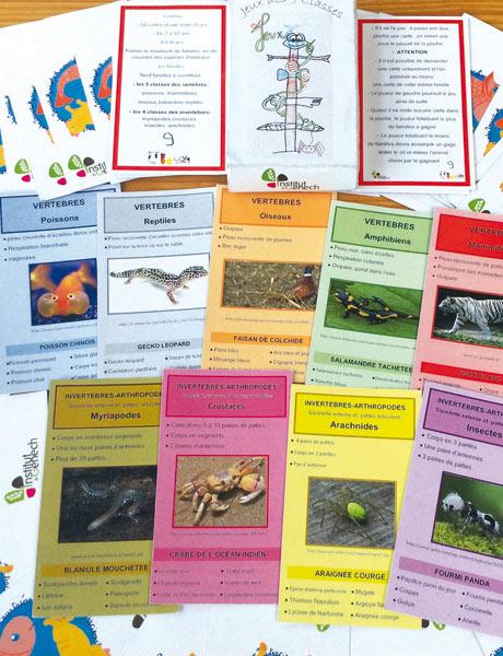 Exemple d'interdisciplinarité : ce jeu de cartes conçu avec 3 enseignants