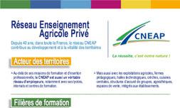 Infographie Chiffre Clés CNEAP